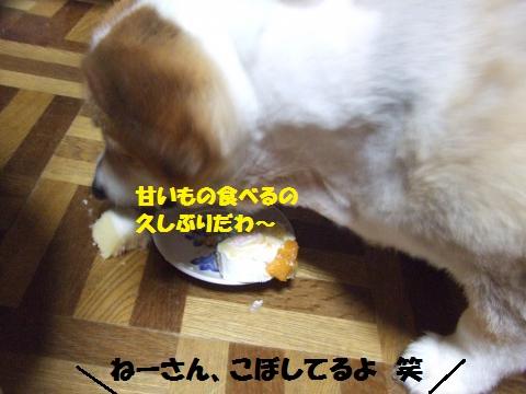 014_convert_20140726014257.jpg