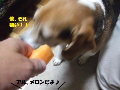 015_convert_20140616015258.jpg