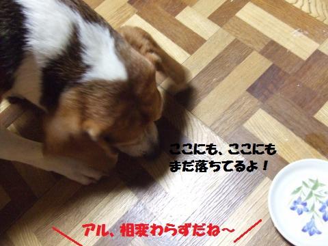 019_convert_20140726014431.jpg