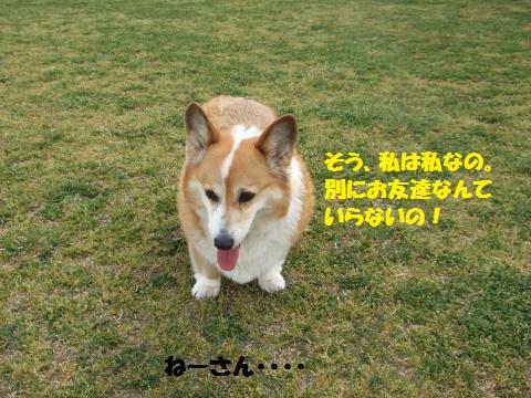 022_convert_20140420065757.jpg