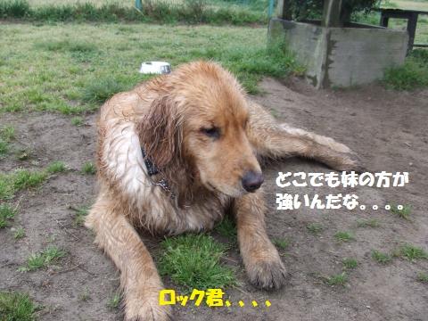026_convert_20140428020129.jpg