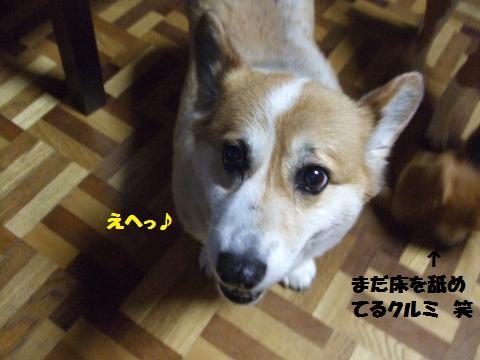 030_convert_20140726014900.jpg