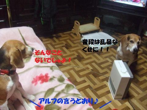 042_convert_20140526005932.jpg