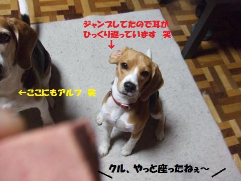 045_convert_20140516010557.jpg