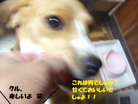 045_convert_20140608073236.jpg