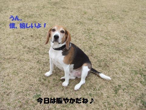 046_convert_20140311035314.jpg