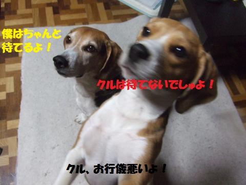054_convert_20140414052300.jpg