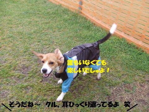 062_convert_20140430052534.jpg