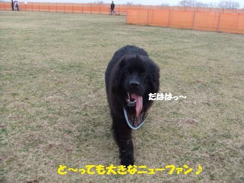 067_convert_20140311033118.jpg