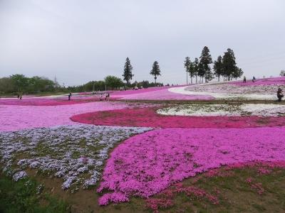 hitsujiyama