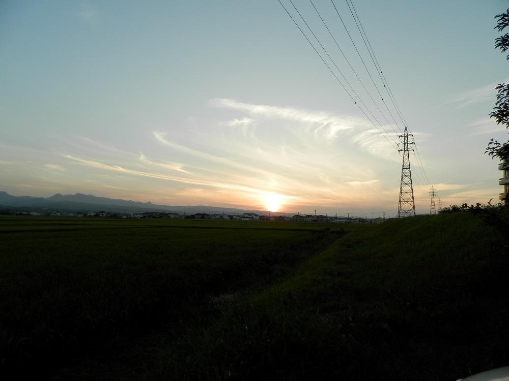 P9115190.jpg