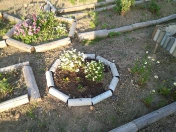 20140511パイプで花壇4