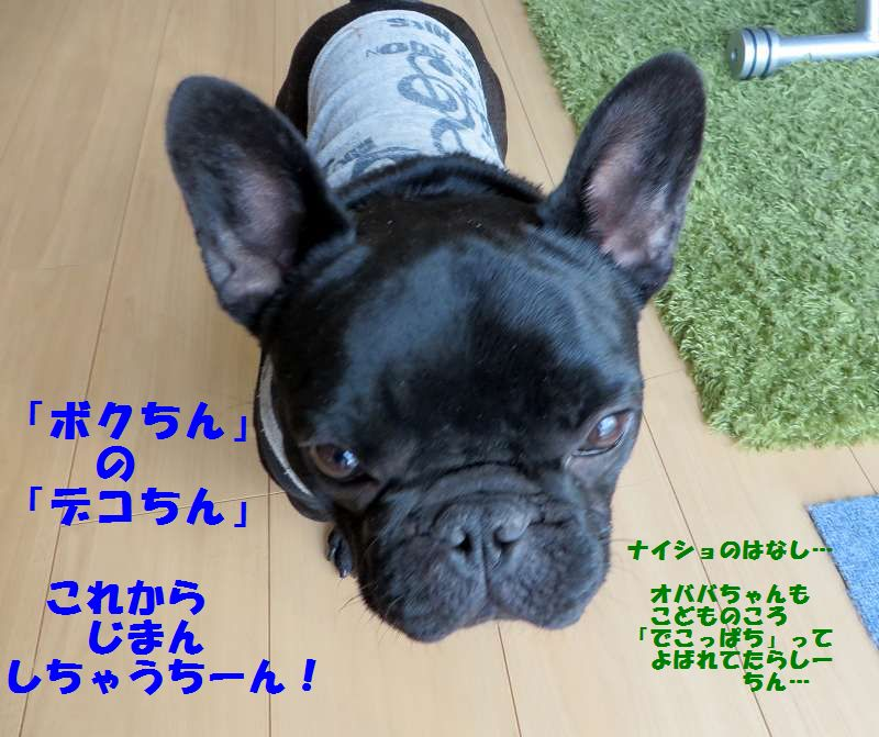 002_20140326113153fc9.jpg
