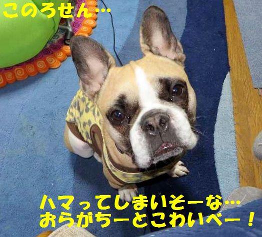 052_20140718100054faf.jpg