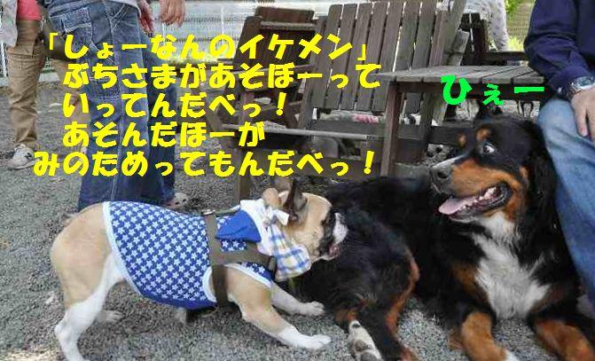 084_2014051210201408c.jpg
