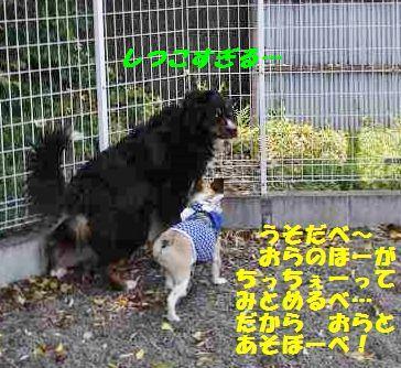 092_20140512141739c7f.jpg