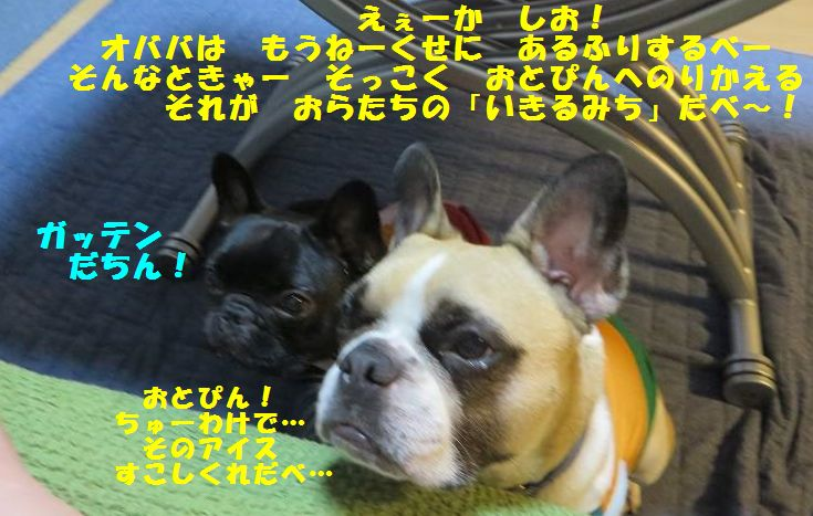 152_20140724145812566.jpg