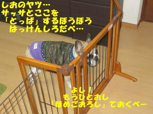 157_20140227142531e5c.jpg