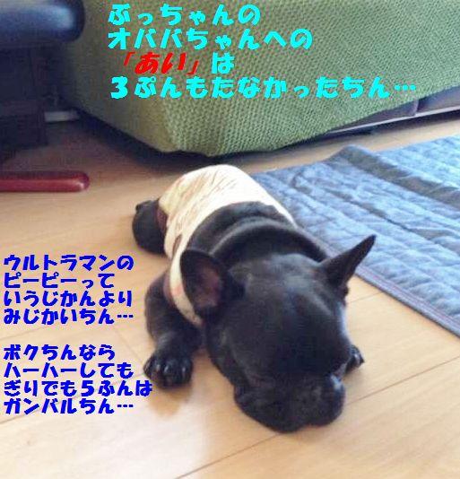 IMG_5346.jpg