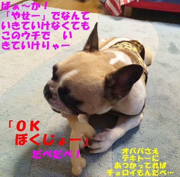 IMG_6969_20140701163653aac.jpg