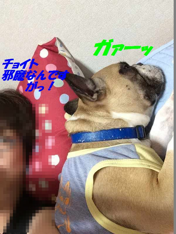 IMG_7037.jpg