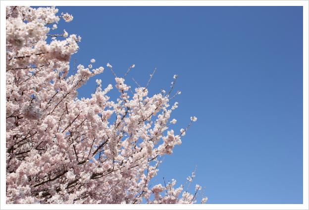 2014-03-26-01.jpg