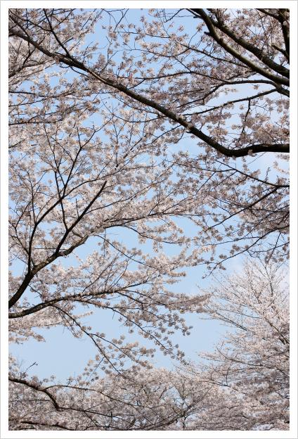 2014-04-15-14.jpg
