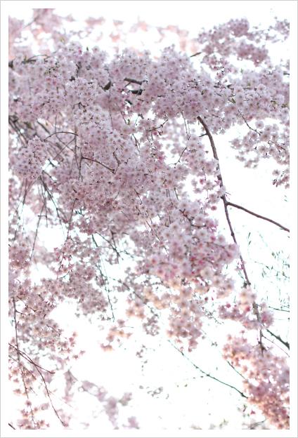 2014-04-17-21.jpg