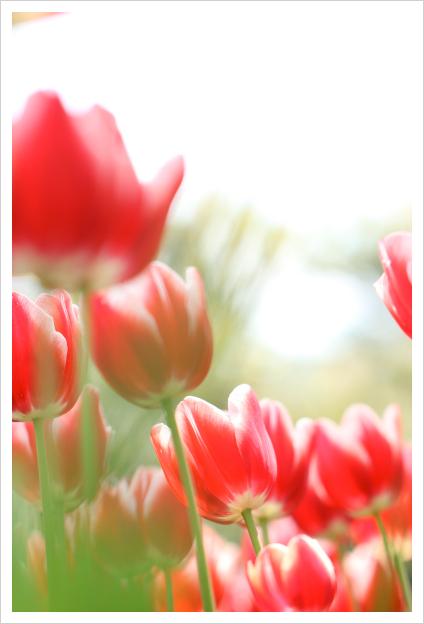 2014-05-12-01.jpg