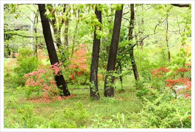 2014-05-14-31.jpg