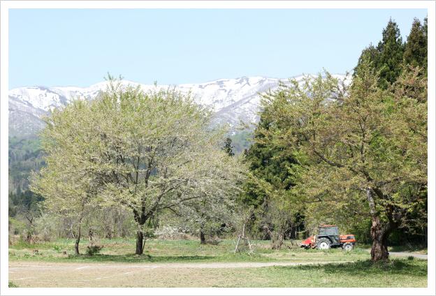 2014-05-29-20.jpg