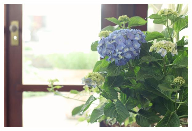 2014-07-03-06.jpg