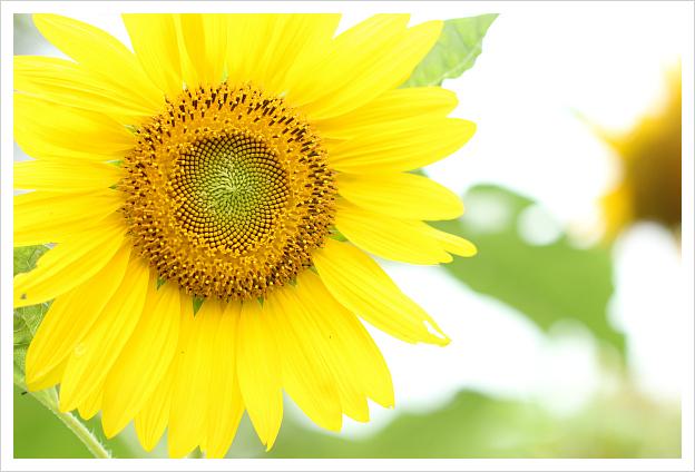 2014-08-07-40.jpg
