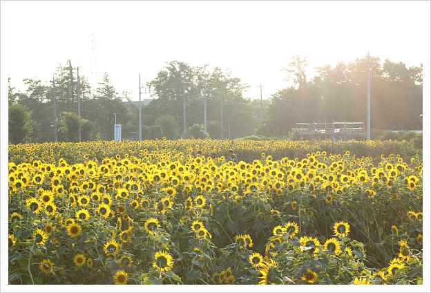2014-08-14-30.jpg