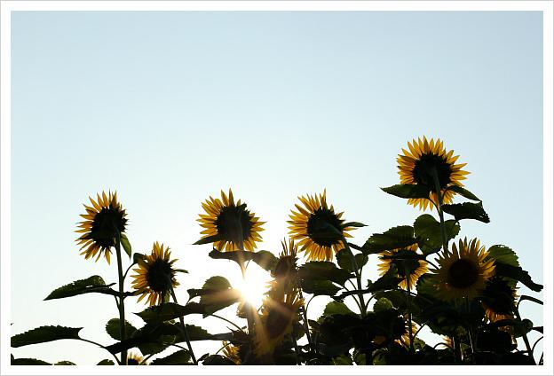 2014-08-14-31.jpg