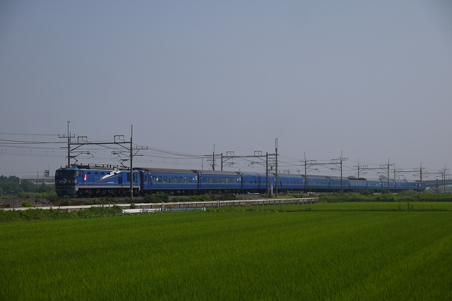 P1120078.jpg