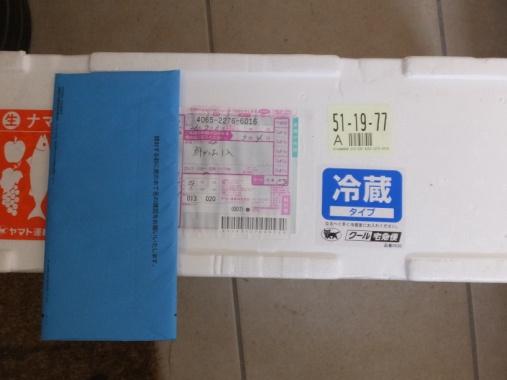 DSCF4839+1.jpg
