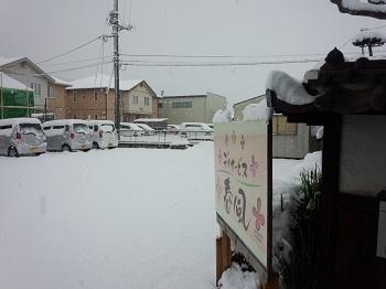 春風の駐車場朝