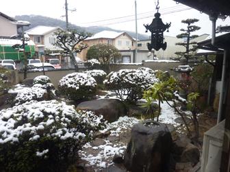 2回目の雪