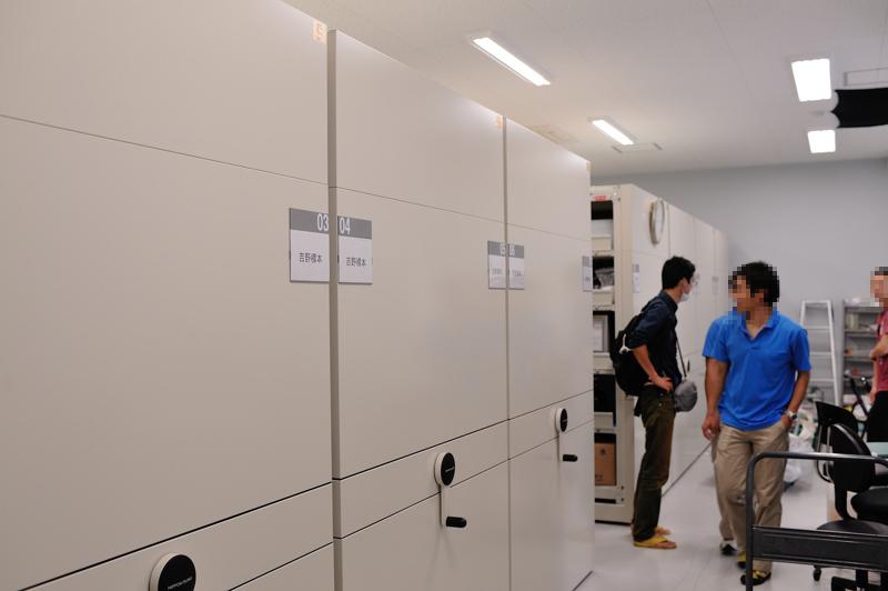 美ら島財団の標本庫