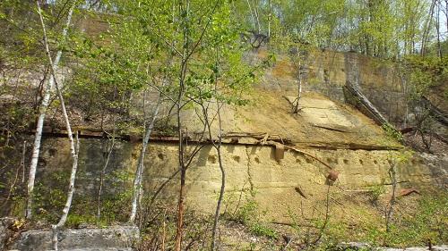 北見炭鉱抗 (4)壁