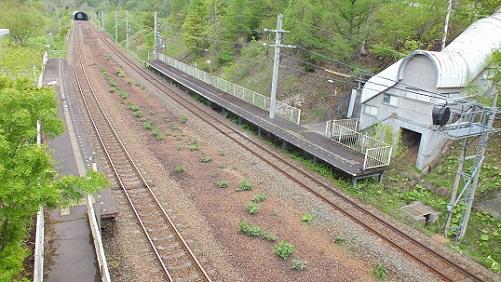 楓駅 (3)