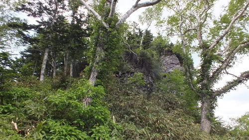 庚申草 (17)岩