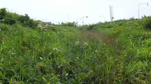 羽幌線 (2)