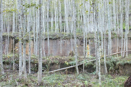 千歳 鉱山製錬カツ