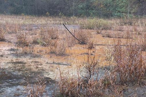 千歳鉱山 排水池
