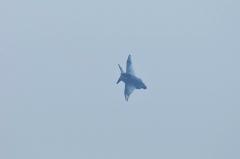 Hyakuri AB_RF-4EJ_60