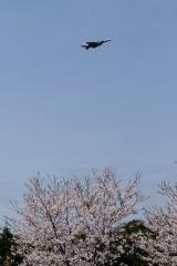Hyakuri AB_F-15J_294
