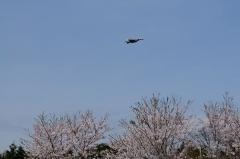 Hyakuri AB_F-15J_295