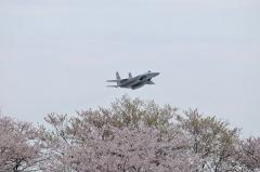 Hyakuri AB_F-15J_296